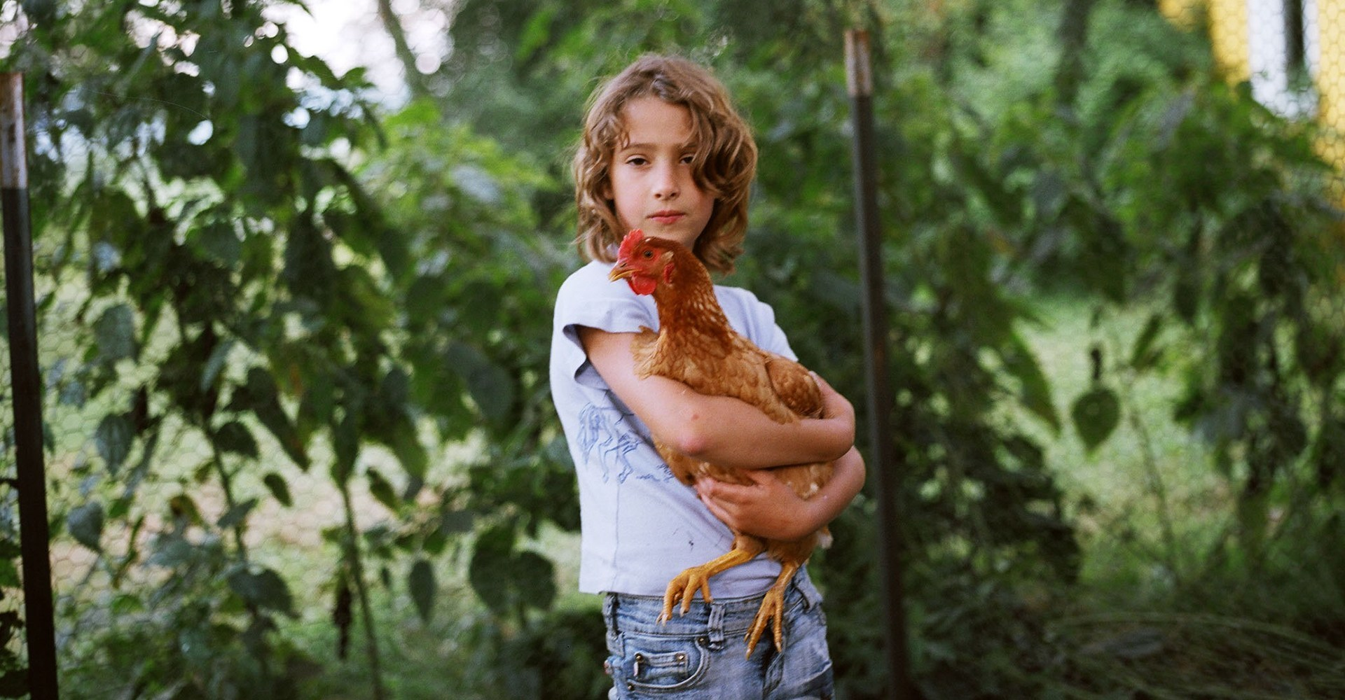 Olivia with Chicken