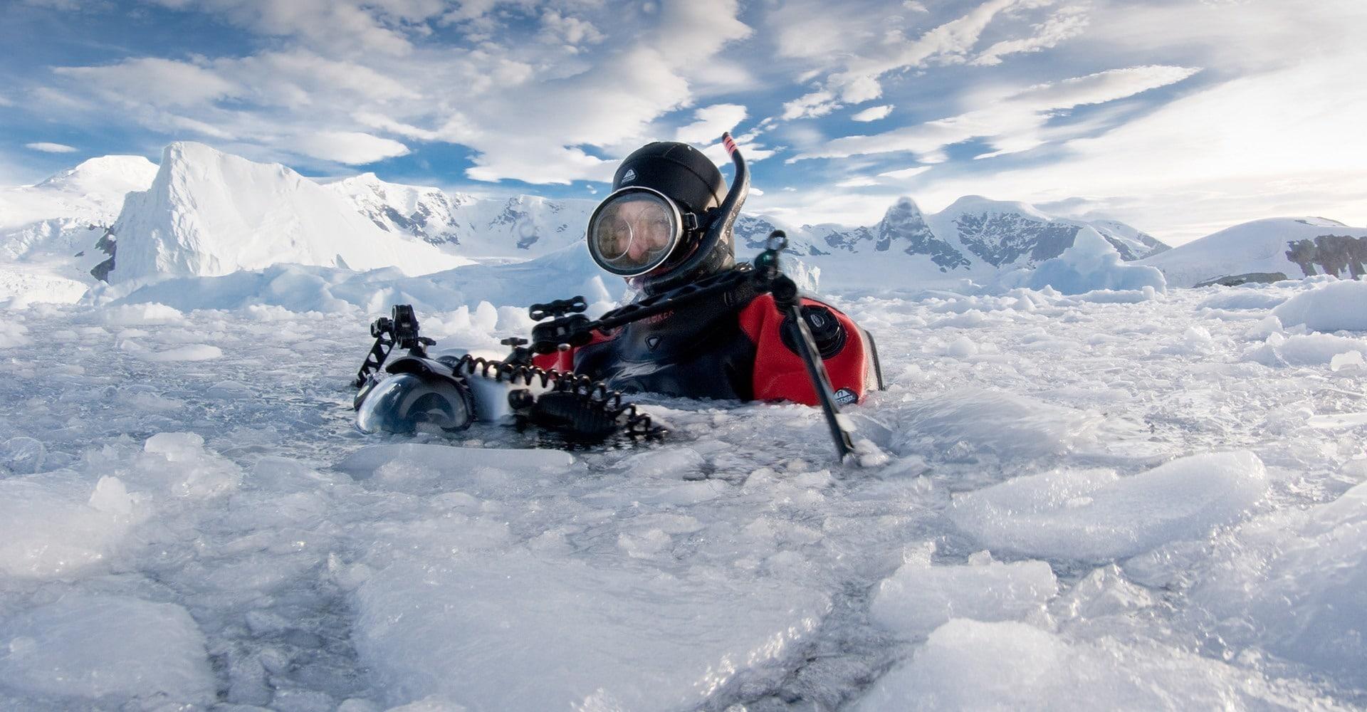 Danko Island, Antarctic Peninsula