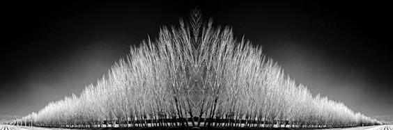 Photo by Lisa Gizara for Digital Darkroom exhibit