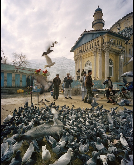 Photo by Philipp Engelhorn for 2009 Pictures of the Year International exhibit