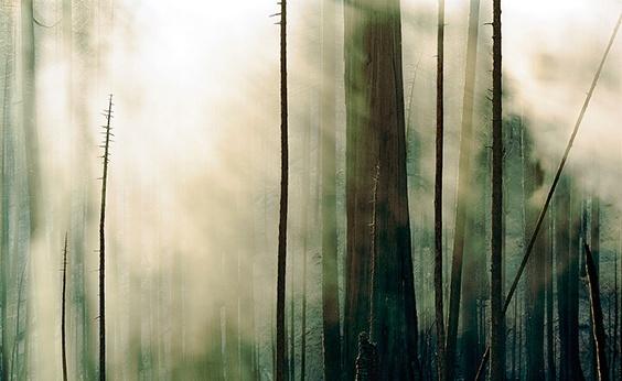 Photo by Sasha Bezzubov for Water exhibit