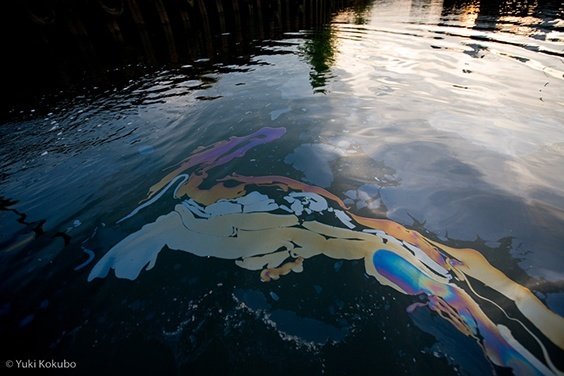 Photo by Yuki Kokubo for Water exhibit