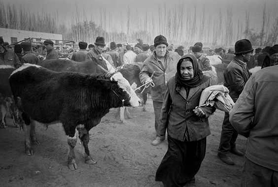Ryan Pyle: Chinese Turkestan: A Photographic Journey Through an Ancient Civilization