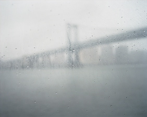 Photo by Susannah Ray for Sink or Swim exhibit