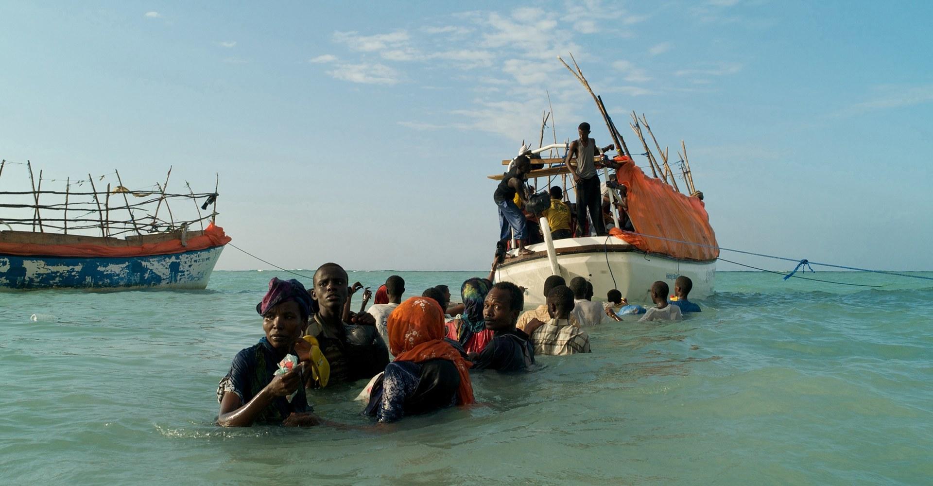 Alixandra Fazzina: Visualizing Migration